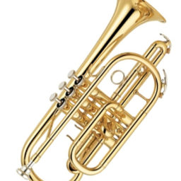 Yamaha YCR 2330 Cornet in Bb at Pencerdd music store penarth