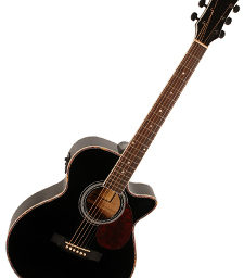 Freshman FA1ABK Folk Body E.Q. Black Gloss available at pencerdd music store penarth near cardiff