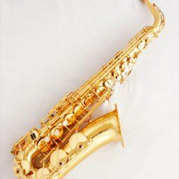 Yamaha YAS 6 Alto Saxophone